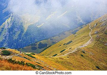 picos, vermelho, polônia, montanhas, tatra