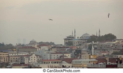 Picrureque view of historical part Istanbul with ancient Mosque buildings in summer day. Slow motion, Full HD video, 240fps, 1080p.