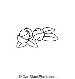 pictogram, stijl, schets, guarana