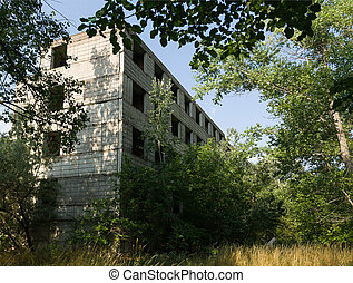 overgrown abandoned construction site