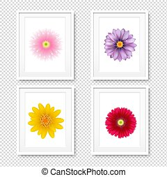 Picture Frame With Flowers Isolated Transparent Background