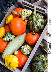 Picture from above of wooden boxes with autumn vegetables