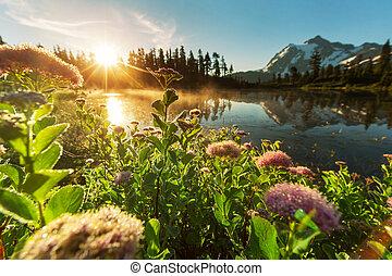 Mount Shuksan, Washington