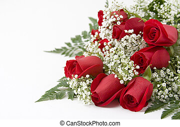 Picture of a dozen Red Roses on white background with space left for copy