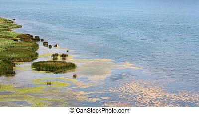 lake Prespa in Albania in summer - picture of a lake Prespa ...