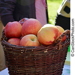 ripe apples for sale in a wooden basket