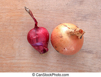 yellow and spanish onion on wood background