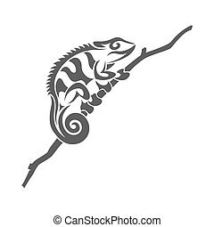 chameleon - picture of black and white chameleon lyzard in...