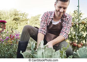 Picture of confident farmer in sunny garden