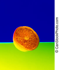 Cross-Section of an Orange