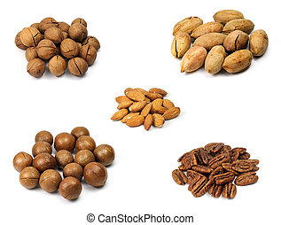 Picture of different kinds of nut with white background.