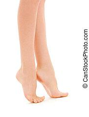 legs - picture of slim female legs over white
