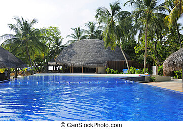 swimming pool - Picture of swimming pool at tropical resorts...