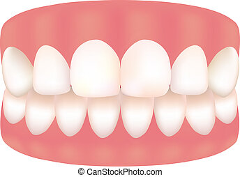 picture of Tooth - Tihs is a picture of good tooth.