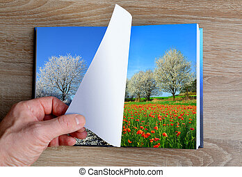 Picture of winter and summer landscape in the book.