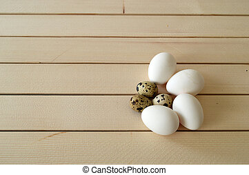 pictures of eggs in quail's nest, chicken and quail's eggs, eggs in the most beautiful bird's nest