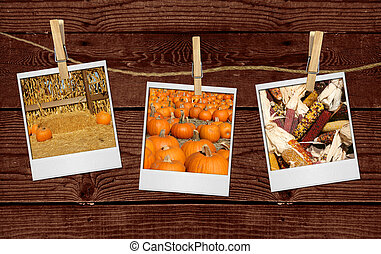 Pictures of Fall Related Images Hanging on a Rope