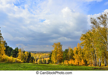 Picturesque autumn landscape in golden autumn forest on hill