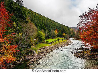 picturesque autumn scenery with forest river in mountains....
