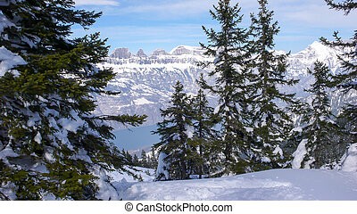 picturesque deep winter mountain landscape in the Alps of Switzerland near Flums with a turquoise lake below and forest in the foreground