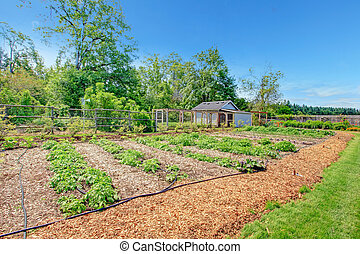 Picturesque farm garden bed and green house