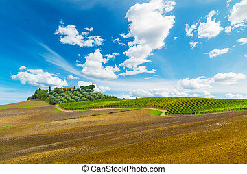 Picturesque hill in Tuscany