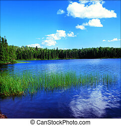 Summer vista on a picturesque pristine lake in the Boundary Waters Canoe Area Wilderness of northeast Minnesota.