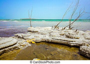 Picturesque islands of salt