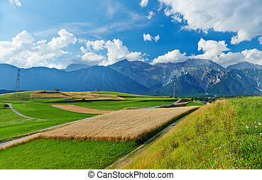 landscape of valley in Austrian Alpine mountains, agriculture crops field rural scene, picturesque view