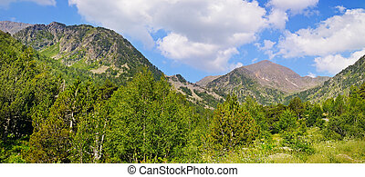 Picturesque mountain landscape,meadow, hiking trail and beautiful sky.