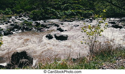 Picturesque mountain stream in a rolling mountain landscape with rushing water that beats against the rocks