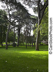 Picturesque park Buen-Retiro - Picturesque Madrid park...