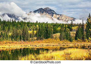 Picturesque Patricia Lake