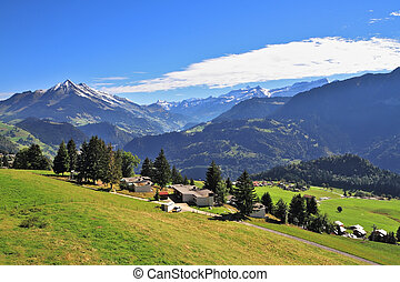 Picturesque gentle alpine meadows and rural houses chalets with red roofs. Gorgeous weather in the resort town of Leysin in the Swiss Alps