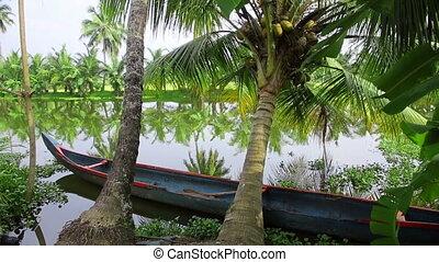 Picturesque scene in Kerala Backwaters