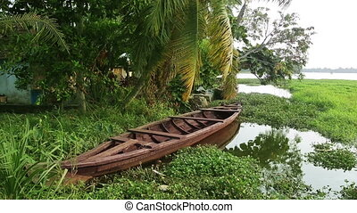 Picturesque scene in Kerala Backwaters