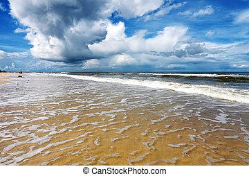 Picturesque sea landscape