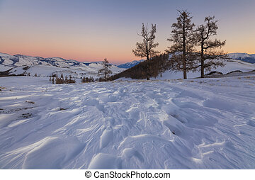 Picturesque snowy landscape on the background of a beautiful sunset