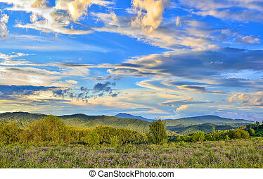 Picturesque summer evening sky over the flowering mountain meadow