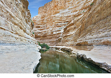 Ein Avdat Canyon, continue the journey - Picturesque valley...