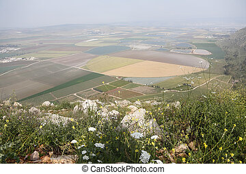 Picturesque valley in the Israeli Galilee. A spring ...