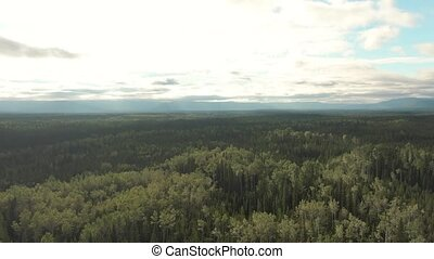Picturesque View of Forest from Above. Aerial Drone Shot. Northwest of Fort Nelson, Northern British Columbia, Canada