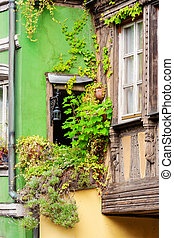 vine clad window of an old house in Strasbourg, France