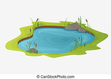 Picturesque water pond with reeds. The concept of an open small swamp