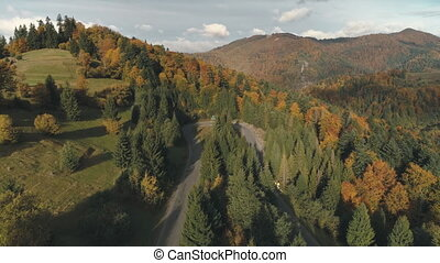 picturesque winding road among thick forests and meadows -...