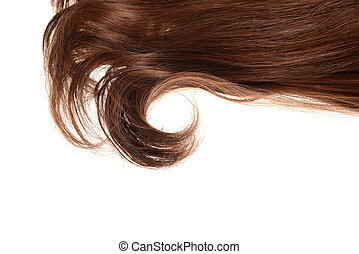 piece of brunette brown hair in a curl isolated