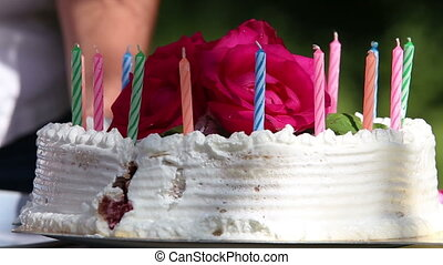 piece of cake with candles spread on a plate