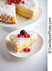 Piece of Homemade coconut cake on a white plate