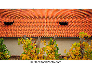 Piece of red roof and vineyard