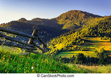 pieceful morning - wooden fence in the grass on the hillside